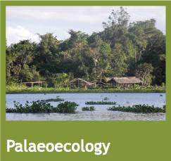 palaeoecology theme button